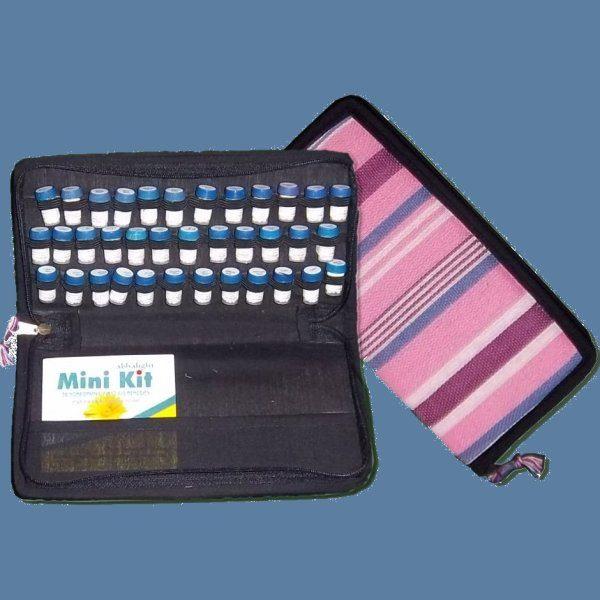 Mini Kit (case)